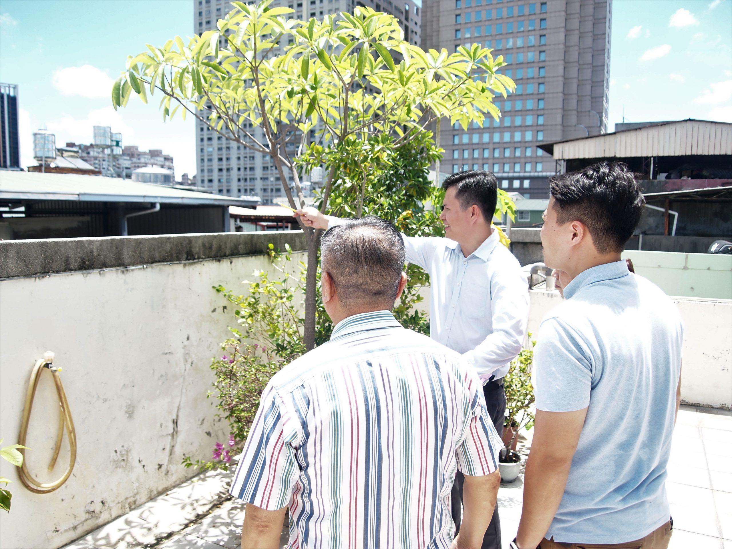 高雄民族住宅風水整修規畫